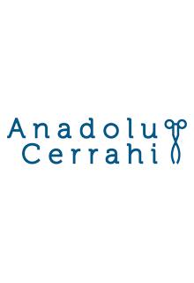 Anadolu Cerrahi
